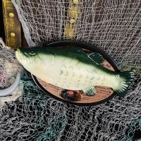 노래하는 물고기 빌리베스